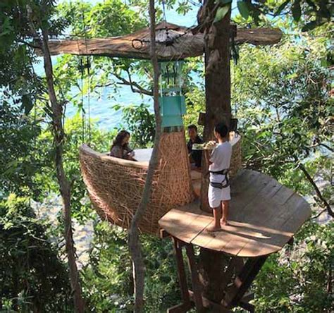 tree top dining cabin inspiring backyard ideas from