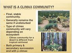 Related keywords suggestions for climax community these images will help you understand the words climax community in detail all images found in the global network and can be used only with permission publicscrutiny Images