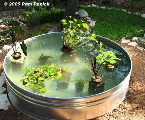 how to create a backyard pond made fish pond filter how to make a container pond in a
