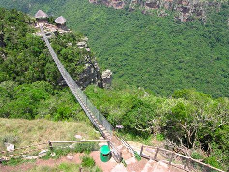 oribi gorge swing oribi gorge the wild 5 5 star durban showcasing