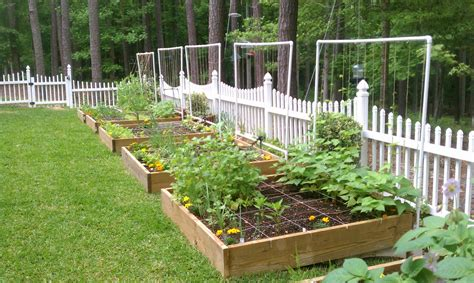watering systems for vegetable gardens sprinkler juice how vegetable gardens benefit from drip