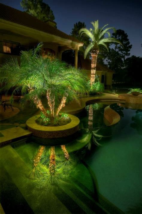 Palm Tree Lights Outdoor 100 Pictures Of The Garden Design The Of The Nature To Modeling Fresh Design Pedia