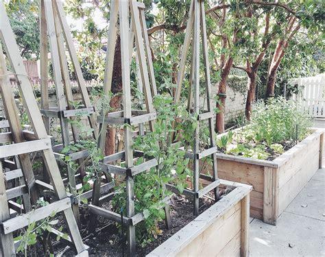 house raised vegetable beds tomato trellis