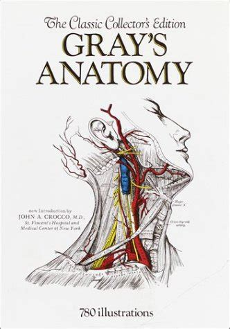 Buku At A Glance Medicine Davey Rz anatomy of the human 20th edition read