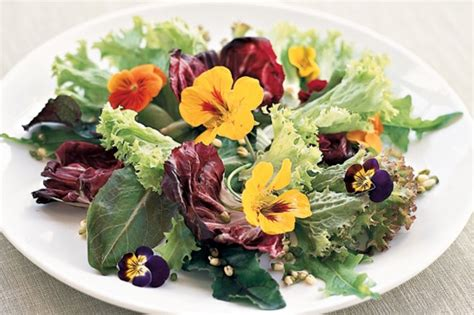 flower food recipe spring salad with jasmine flower vinaigrette recipe