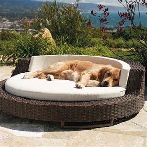 outdoor pet bed 36 awesome dog beds for indoors and outdoors digsdigs