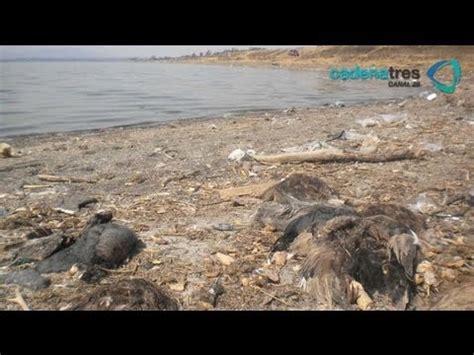 fotos antiguas zumpango estado mexico grieta seca laguna de zumpango estado de m 233 xico youtube
