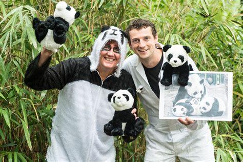 Panda Tosca stem op de panda tosca menten