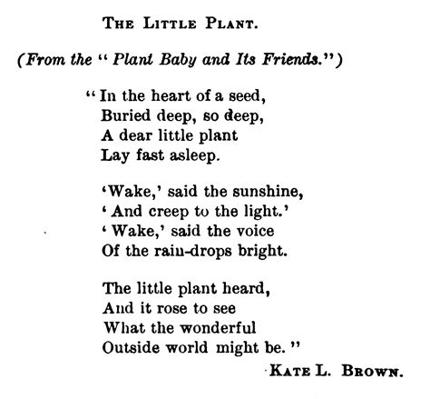 poem   plants grow  seeds kids poems