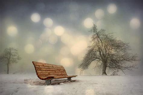 lonely bench lonely bench photograph by lars van de goor
