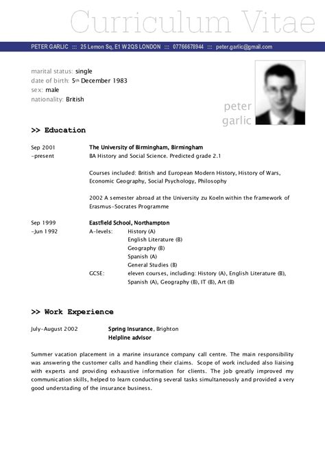 an exle of journalism curriculum vitae exles of resumes cv sle professional writing