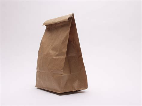 A Paper Bag - the quot brown paper bag quot of appellate court decisions court