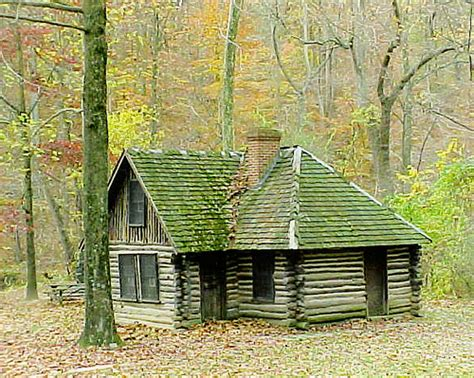 Stay In A Cabin In The Woods 50 Photos To Strike Emotion In Your Audience