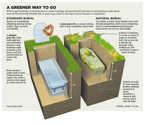 ppt 6 ways to go green at home and save money how to go green cool heads for a hot planet