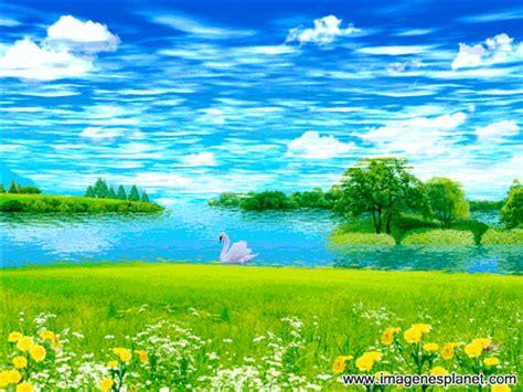 imagenes en movimiento wordpress lindo paisaje con cisne en la laguna imagenes planet