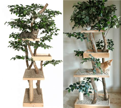how to make a real tree make a cat tree using real branches my amazing diy cat tree