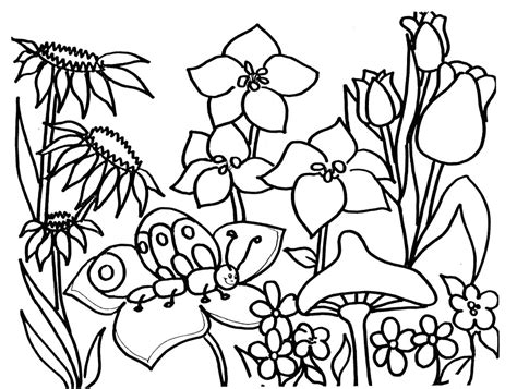 coloring pages to print spring free spring coloring pages az coloring pages