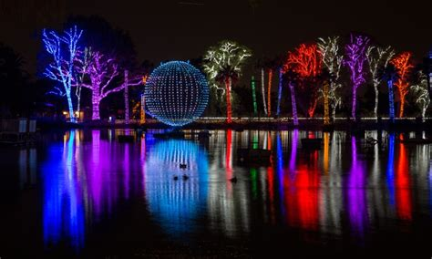 lights of the arizona zoolights at the zoo in az groupon