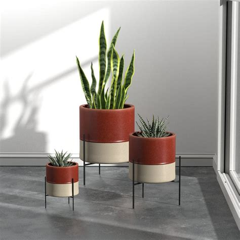 planters  indoor plants  succulents curbed