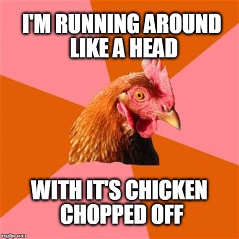 Anti Joke Chicken Meme Generator - anti joke chicken meme imgflip