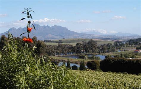 best hotels in stellenbosch reviews of hotels in stellenbosch south africa the