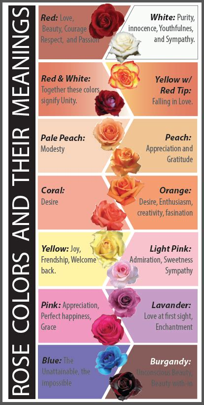 meanings of colors of roses colors and meanings