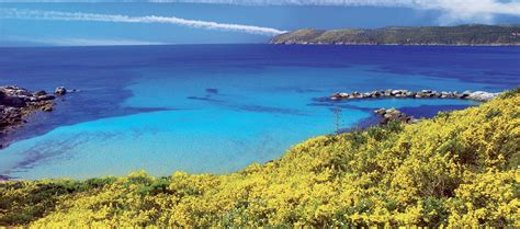 porto isola d elba isola d elba le formichine vacanze