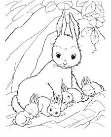 baby rabbit coloring pages bunny rabbits coloring pages az coloring pages