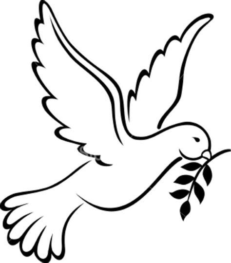 white dove template white dove drawings clipart best