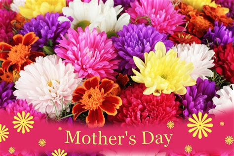 s day free happy mothers day wallpapers many hd wallpaper