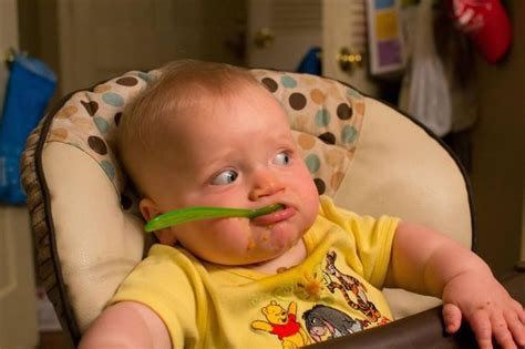 imagenes niños traviesos las fotos mas alucinantes bebes comiendo