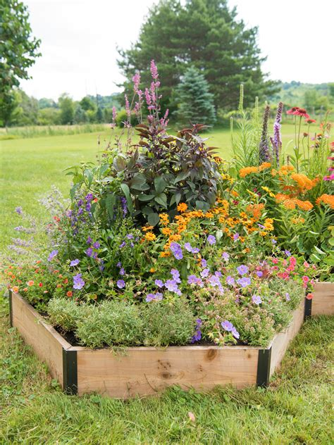 pollinator garden bed hexagonal cedar bed gardenerscom