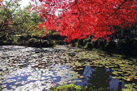 imagenes impresionantes de japon farandula digital imagenes impresionantes de la naturaleza