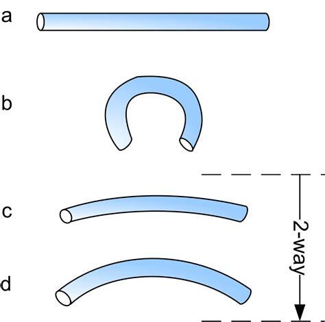 shape memory hydrogels