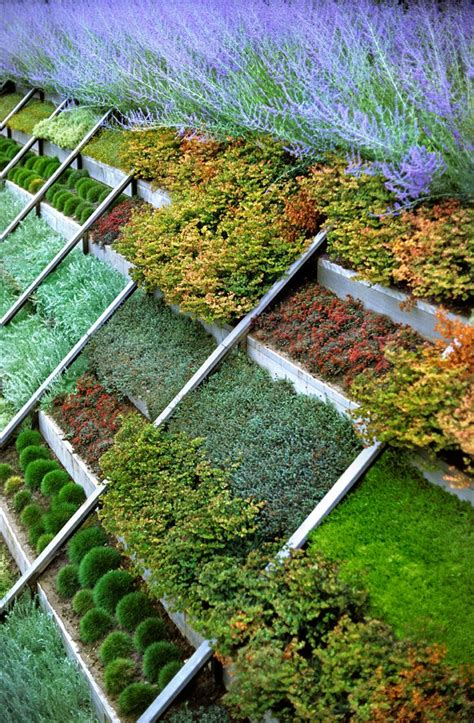 Hillside Gardening Ideas Landscaping Ideas For Planting On A Slope