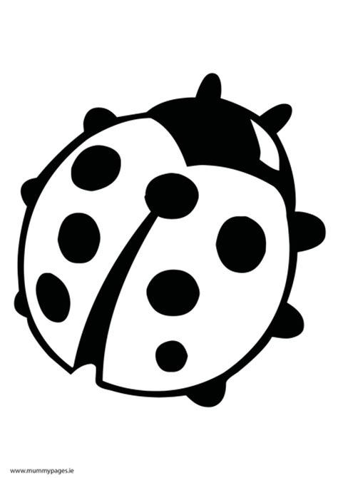 coloring pages of lady bird free coloring pages of ladybird