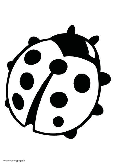 ladybird outline   clip art  clip