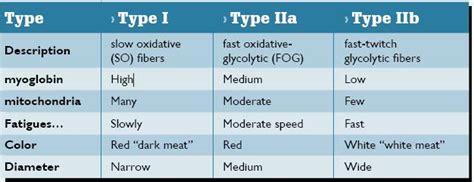 Anti Fiber All Type fiber types