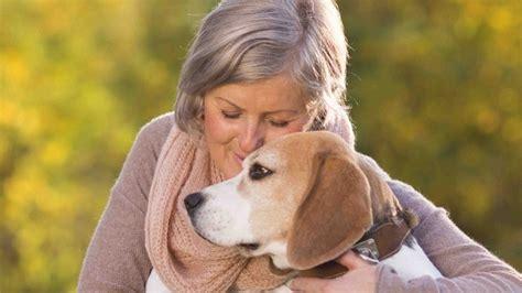 perros con personas los mejores perros para personas mayores