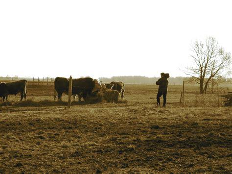 agricole russe portrait maurice rossin coop 233 ration agricole en russie
