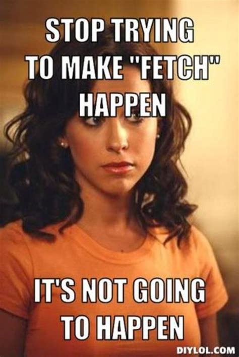 stop trying to make fetch happen meme image 768914 stop trying to make fetch happen