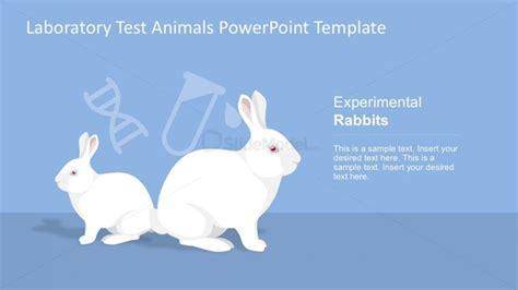experimental rabbits for powerpoint slidemodel