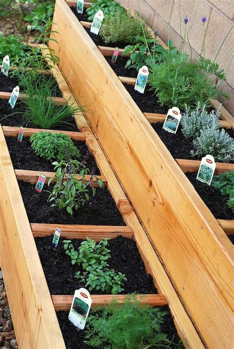 how to build container garden container gardening