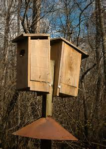 wood duck house plans diy how to build a wood duck house pdf 18 inch