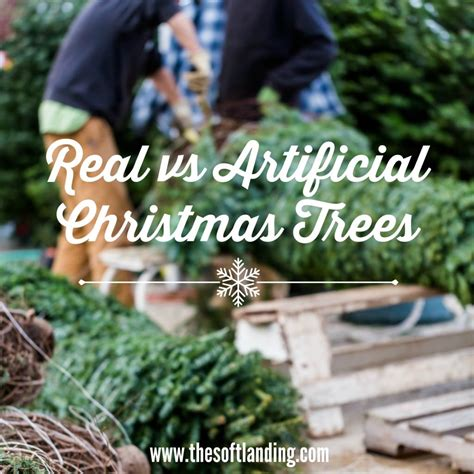 real vs artificial christmas trees not an obvious choice