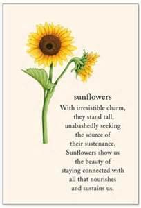 sunflowers birthday card cardthartic com