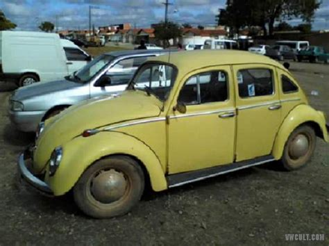 4 Door Vw Beetle by Volkswagen Beetle 4 Door