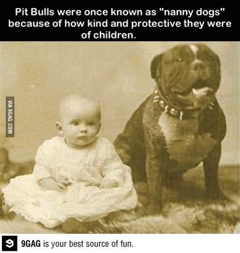 nanny dogs nanny dogs aminals yeah im 5