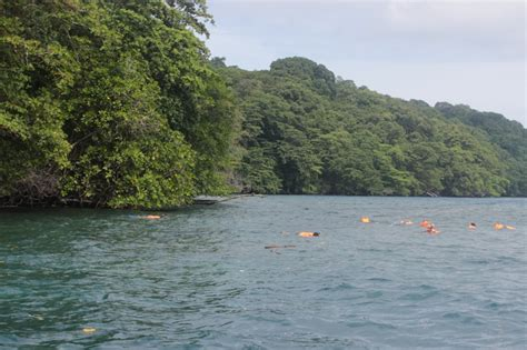 Snorkling Anak snorkling pulau krakatau ardiyanto id