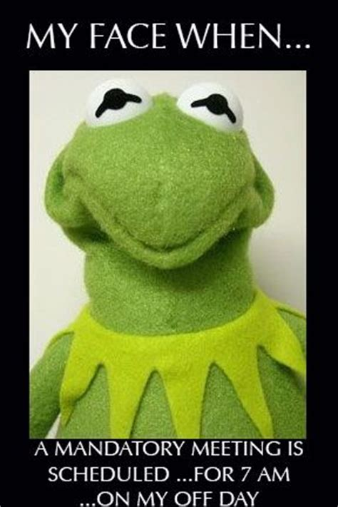 Kermit Meme My Face When - 283 best kermit meme speaks images on pinterest funny